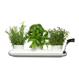 Sagaform Herb Pot Trio - Easily accessible kitchen herbs in an attractive ceramic pot are an A+ in my book. I'd love to set this up right next to my stove with my three favorite and most-used herbs: sage, basil and thyme.
