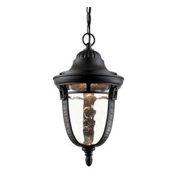 Trans Globe Lighting - Trans Globe Lighting 40224 ROB Outdoor Hanging Light In Rubbed Oil Bronze - Part Number: 40224 ROB