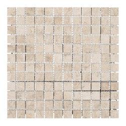 Stone & Co - Tundra Gray Polished 1x1 Marble Mosaic - Finish: Polished