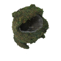 """Master Garden Products - Moss Frog Topiary Planter, 9""""W x 12""""H - Our animal moss topiary basket planters are made of a wire frame, covered in line with moss.  Great for indoors and outdoors. Plastic liner inserted."""