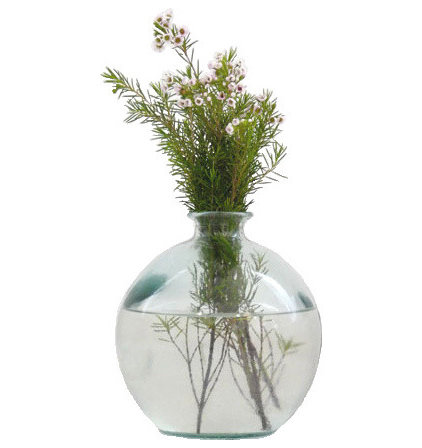 contemporary vases by Brook Farm General Store