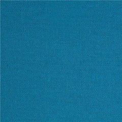 fabric blue echino canvas fabric from Japan