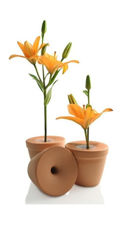 Mint - Bud Vase - This terra-cotta vase nips it in the bud. It's fitted with a test-tube like chamber for displaying a single flower. And, you can use it indoors or out.