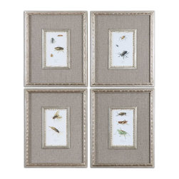 Uttermost - Uttermost Insect Study Framed Art, Set of 4 41536 - Prints are accented by dark taupe and gray linenlook mats. Adding the finishing touch, are matching frames and fillets finished in antiqued silver leaf with hints of red showing through. Prints are under glass.