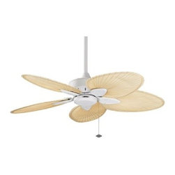 Shop Indoor Outdoor Ceiling Fans Ceiling Fans on Houzz