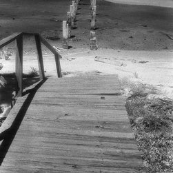Broken - Black & White Photography Limited Edition Print - Hurricane damage and the remnants of a dock.