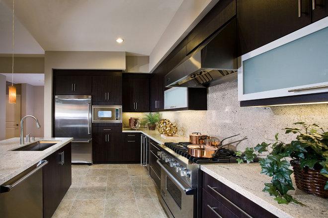 Modern Kitchen Cabinets by Kitchen AZ Cabinets