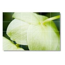 Picture-Tiles, LLC - Flower Picture Mural Tile F328 - * MURAL SIZE: 24x32 inch tile mural using (12) 8x8 ceramic tiles-satin finish.