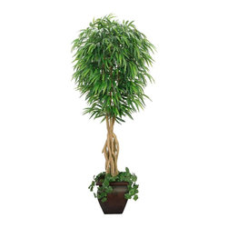 Laura Ashley - Laura Ashley 7 ft. Silk Willow Ficus Tree w Decorative Planter - Constructed from Plastic, polyester, moss, foam, glue, wire, wood, fiberstone. Planter-Container Included. Assembly Required. Lifelike willow ficus tree in a designer planter with an ivy accent. No need to shop for a planter separately - comes complete with decorative planter. High quality artificial plant offers years of beauty with virtually no maintenance. Add life to your decor, place in a corner to soften edges and make a room more welcoming. Decorate your home or office. 32 in. L x 32 in. W x 84 in. H (44 lbs.)The Laura Ashley brand is known for quality and distinctive design, the mark of timeless beauty and relaxed living - and this lifelike plant fulfills those expectations. This beautiful willow ficus tree in a decorative container will instantly liven up your home or office decor - with no maintenance. And, there is no need to shop for a planter separately - the planter pictured is included complete with ivy. Plus, bamboo is a natural material that absorbs color in various degrees, and these natural trunks have slight color variations that make the product more lifelike and enhance the beauty of the item. Plants add a feeling of life to a room, making it warmer and more welcoming; artificial plants let you decorate without concern for water damage, trimming, or soil. This high quality tree is brought to you by Vintage Home - setting the standard in permanent botanicals, Vintage Home products bring you a richer and more realistic plant.