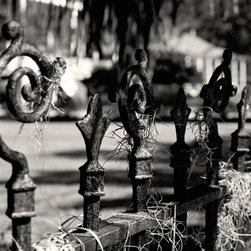 The Andy Moine Company LLC - Iron Fence & Spanish Moss New Orleans LA Fine Art Black and White Photography, 1 - Black and White Fine Art Photography captured with 35MM Ilford Film and reproduced on Brushed Aluminum. This is a Fine Art Aluminum Texture Tile of a Decorative Iron Fence draped in Spanish Moss in the Garden District of the always Majestic - New Orleans, Louisiana.