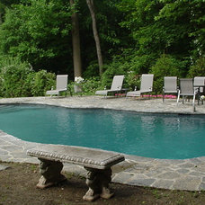 Traditional  by Rick Pinto Swimming Pools, Inc