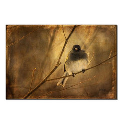 Trademark Fine Art - Lois Bryan 'Backlit Birdie Being Buffeted' Canvas Art - Get back to nature with beautiful gallery-wrapped canvas art. Backlit Birdie Being Buffeted by Lois Bryan is 22 inches high by 32 inches wide. Featuring a bird in nature, this stunning piece will be sure to accent any room in your home.