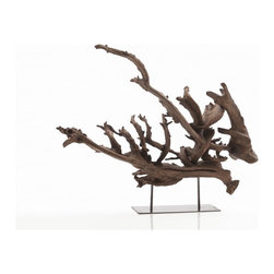 Arteriors Kazu Dragon Tree Root/Iron Sculpture - Who knew a root could be so beautiful? I would proudly display this dragon tree root sculpture in my home.