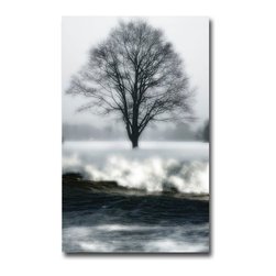 Maudsley Cold Tree - Canvas, 48x36x3 - A collage piece. I'm often looking for ways to combine natural icons. Here it's the tree and the sea. Then of course the soft snow.  I overexposed the snow as well as the foam on the waves.