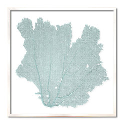 Kathy Kuo Home - Avalon Large Coastal Beach Blue Haze Sea Fan Wall Decor - by Karen Robertson - Your fan club has arrived. Not everyone has fans as well mannered, diverse and interesting as this. And you, with your penchant for uniquely beautiful wall decor, deserve all the fanfare you receive.