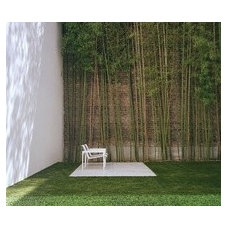 urban garden with bamboo picture on VisualizeUs