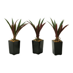 """D&W Silks - Artificial Lily Grass in Square Ceramic Planter, Set of 3 - It's amazing how much adding a plant can change the look of a room or decor, but it can be difficult if your space is not conducive to growing plants, or if you weren't exactly born with a """"green thumb."""" Invite the beauty of nature into your home without all the upkeep with this maintenance-free, allergy-free arrangement of artificial lily grass in a square ceramic planter. This is not a living plant."""