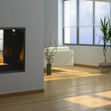 Modern Fireplaces by Napoleon Fireplaces