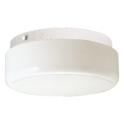 """Progress Lighting - Progress Lighting P7375STR Hard-Nox 9"""" Two-Light Energy Star Qualified Outdoor F - Named for its impact-resistant durability in high traffic areas, the wet location-listed Hard-Nox collection works well in both indoor and outdoor applications. White, Black or Satin Aluminum finishes, along with polycarbonate or acrylic diffusers, complement a variety of shapes. Tough enough to stand up to the wear and tear of rough usage in high traffic areas both indoors and outdoors, Hard-Nox is ideal for garages, workrooms and as outdoor security lighting.Features:"""