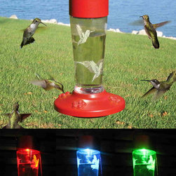 Songbird Essentials - Solar Powered Color Changing Hummingbird Feeder - This great looking Solar Lighted Hummingbird Nectar Feeder serves double duty in your backyard or garden. By day, it's a functional 4-port, 10 ounce nectar feeder that draws Hummingbirds for your viewing pleasure. By night, the feeder becomes an LED color