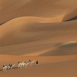 Magic Murals - Camels in Sahara Wallpaper Wall Mural - Self-Adhesive - Multiple Sizes - Magic M - Camels in Sahara Wall Mural