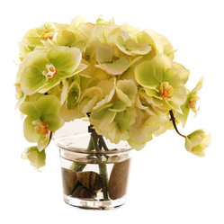 Jane Seymour Botanicals - Hydrangea and Phalaenopsis Orchid in Glass - Few botanicals are as dazzling — or as demanding — as the orchid. Skip the hassle and opt instead for this permanent floral arrangement featuring Phalaenopsis orchid blossoms and hydrangea petals that will keep their stunning blooms forever.