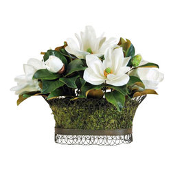 Winward - Magnolia Wire Basket Flower Arrangement - Timeless magnolias are the grand dames of the flower world. Ours  in bright white  lend an enduring beauty to any room.