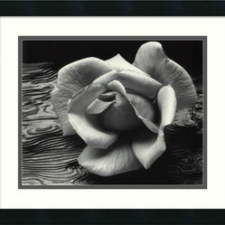 """Rose and Driftwood, San Francisco, California, 1932"" Framed Print by Ansel Adam"