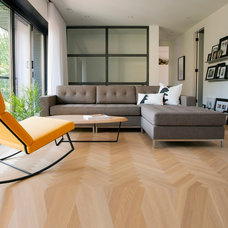 Contemporary  by Zin Home