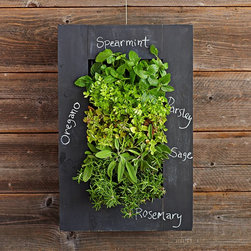 Chalkboard Wall Planter - A vertical garden on a chalkboard? I so love this idea, and I'd be more than happy to place it in my kitchen.