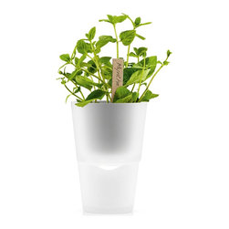 Eva Solo - Eva Solo Herb Pot - This self-watering herb pot enables you to always have fresh herbs to hand in the kitchen as it ensures optimum growing conditions for plants. By means of a nylon wick in the bottom of the pot, the plant draws up the water it needs to stay green and fresh. Made of frosted glass, plastic and nylon.