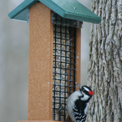 Songbird Essentials - Recycled Poly 3 in 1 Feeder - Feeds 2 suet cakes, or peanuts in shell, or fruit. Can also be used for nesting material in the spring. Easy to fill and clean. Vinyl coated steel cable.