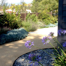 Contemporary Landscape by California Deck Builders