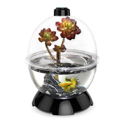 Bio Bubble - Bio Bubble Wonder Bubble - 40322601 - Shop for Aquariums and Bowls from Hayneedle.com! Whether by land sea or air the Bio Bubble Wonder Bubble provides the perfect habitat for your pet. Constructed from high quality acrylic plastic it can be converted between wet dry humid and open air environments. Easy to clean and maintain there a number of accessories to further customize your pet's habitat. About BioBubble Pets Based out of Boca Raton Florida BioBubble pets provides a unique and innovative spin on home habitats for your pets. Whether you require wet dry humid arid or environments anywhere in between BioBubble has you covered. Modular in design each of their products is able to be converted to accommodate nearly any small animal or plant and they also offer a wide array of accessories. With the owner kept in mind as much as the pets these products are user friendly and prove to be easily assembled cleaned and maintained for years of enjoyment. BioBubble Pets is on the cutting edge of home habitat design so if you're looking for quality products guaranteed to fit your diverse and unique needs look no further.
