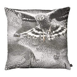 By Nord Copenhagen - Peregrine Falcon B/W Decorative Pillow - This falcon adds a natural, graphic look to your interior. Printed as a digital photo print in the recognized cotton canvas quality from Danish firm By Nord. Imported from Denmark.