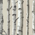 Brewster Home Fashions - Irvin Gray Birch Tree  Wallpaper Bolt - An enchanted woodland of towering birch trees makes this lodge style wall paper a perfectly rustic decor piece. With a shimmering pearlescent backdrop this oh so grand design invites both depth and magnitude to walls in a way that's as natural as it is effortless.