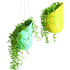 Modern Indoor Pots And Planters by Design Public