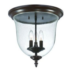 Acclaim Lighting - Belle Collection Ceiling-Mount 3-Light Outdoor Architectural Bronze Light Fixtur - Shop for Lighting & Fans at The Home Depot. The Belle collection reflects a vintage Early American design reminiscent of Williamsburg or New England. This fixture is made of durable powder-coated steel and is rated for damp location use. It is a good choice for a covered porch ceiling. The seeded glass globe makes it elegant enough for interior use also.