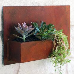 Steel Wall Planter -