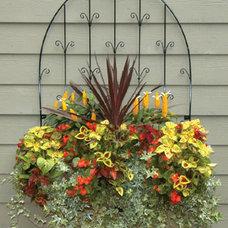 Contemporary Outdoor Decor by Kinsman Garden
