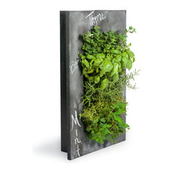 Grovert Wall Planter, Chalkboard - Grow your own lush wall garden with one of GroVert's stunning wooden frames! Each GroVert kit is assembled in six simple steps, making GroVert an effortless way to add greenery to your walls! Watering is simple and clean and keeps your walls dry.