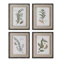 Uttermost - Uttermost Butterfly Plants Framed Art, Set of 4 51079 - Prints are accents by heavily distressed, black outer wooden frames with heavily textured, offwhite inner lips with a heavy taupe wash. Center portion of frames are covered in a sand faux linen.