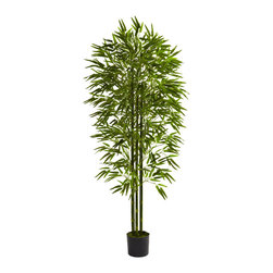 Nearly Natural - Nearly Natural 6' Bamboo Tree UV Resistant (Indoor/Outdoor) - A handsome addition to your home, office, patio, porch, peace garden, or anywhere else, this lovely six foot bamboo tree will bring serenity and Eastern calm to your decor. With three trunks and more than 1275 leaves, this offering is fully UV resistant, making it a perfect indoor / outdoor decoration for your home or office. Also makes an ideal gift for the nature lover in your life.