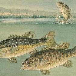 Magic Murals - Largemouth Bass Wallpaper Wall Mural - Self-Adhesive - Multiple Sizes - Magic Mu - Largemouth Bass Wall Mural