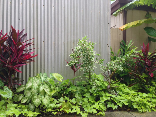 An Apartment Complex Gets a Garden Makeover
