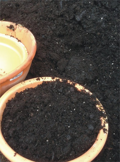 Beat The Frost And Make Terracotta Your Natural Choice
