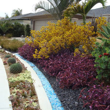 Eclectic Landscape by Nathan Smith Landscape Design