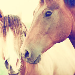 Two Horses - Two horses in light color