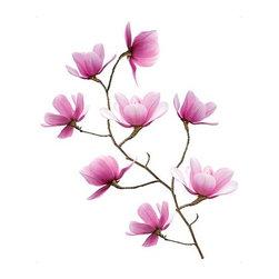 SLÄTTHULT Decorative stickers - Decorative stickers, magnolia