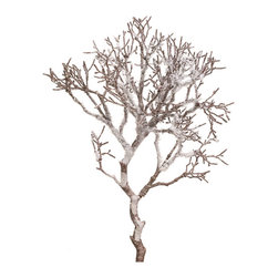 Snow Twig Branch - This Snow Twig Branch resembles coral washed ashore when strategically placed throughout a Coastal Christmas tree. Whether your backyard is the ocean or you're miles away, a Coastal inspired Christmas tree is sure to bring you extra joy this holiday season.